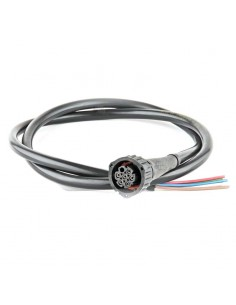 Conector 7 PIN con Cable