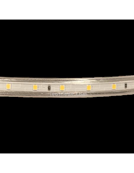 Tira LED Luz Cálida | Tira LED 220V de color calida | Tira LED Azul