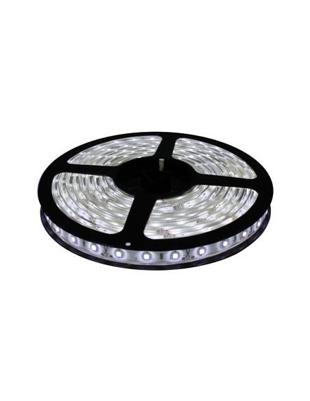 Tira LED -  30 LED/M - 5050