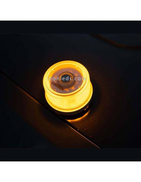 LedGuardian ROAD Flare Signal V16  LEDSL102 4062172184359 | LeonLeds