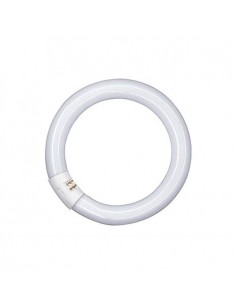 Tubo Led Circular T9 - 20W -30cm