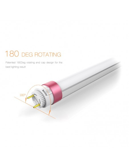 Tubo LED Megalux Food Carnes Rojas Leds Factory Tubos led de la mejor calidad   LeonLeds