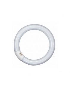 Tubo Led Circular T9 - 20W 30cm