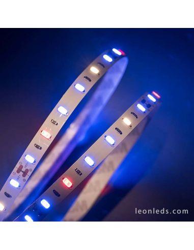 Tira LED especial Cultivo de plantas en interior -Standard- 5Metros | LeonLeds